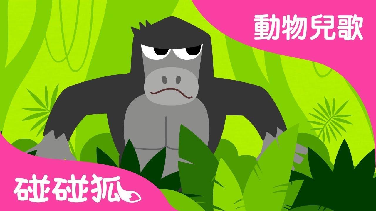 森林 嘭嘭   動物兒歌   碰碰狐pinkfong !兒童兒歌