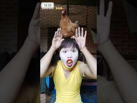 Ayam beneran gasy