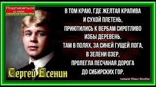 С Есенин В том краю где жёлтая крапива читает Павел Беседин