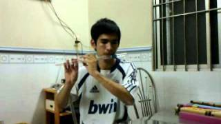 Mùa Thu Lá Bay - Glass Flute
