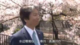 未来都市・八尾〜夢 創造 そして実現へ〜