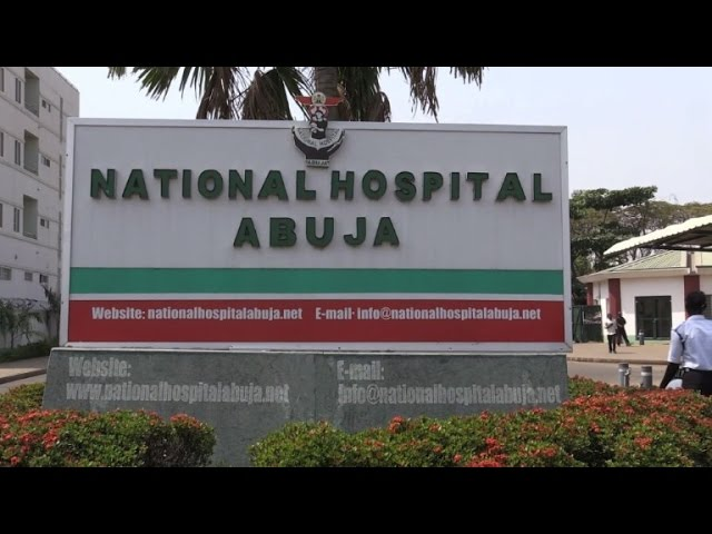 'Hygienic practices' needed to contain Lassa fever in Nigeria