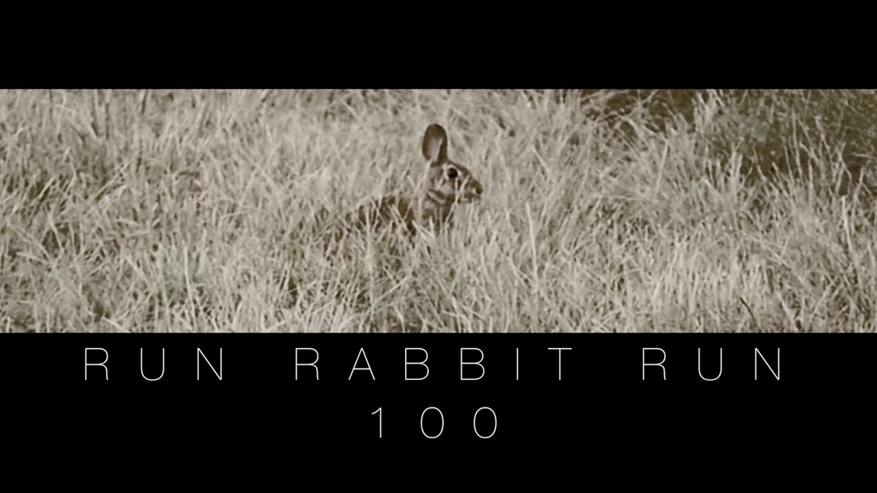 rabbit run analysis This song is about an older man speaking to a baby, telling it to breathe the old man then describes the unfortunate working life the baby will have to face: run, rabbit, run.