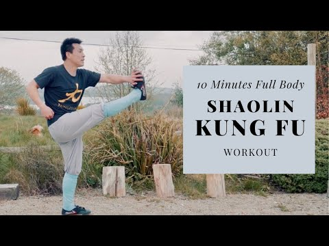 10 Minutes Full Body Kung Fu Workout at Home - No Noise, No Equipment (45 Sec Interval Training)
