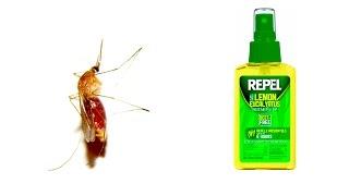 NEW!! Keep Bugs Away- DEET Free! Lemon Eucalyptus Bug Spray