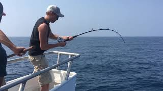 Monster Wahoo Fish in the Gulf of Mexico!!