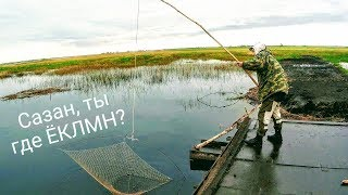 Рыбалка на паук летом ЁКЛМН Рыбалка на щуку Рыбалка экраном Рыбалка 2019
