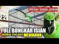 Cucak Ijo Gacor Bongkar Isian Kapas Tembak Dan Nembak Panjang Banget Ngeri  Mp3 - Mp4 Download