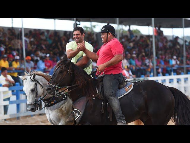 Os cavalos Failas Ambasador e Napoleon Sus e a relação entre a ABQM e o Nordeste brasileiro
