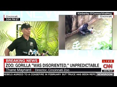 Director Cincinnati Zoo - The Kill Was Necessary (Press Conference)