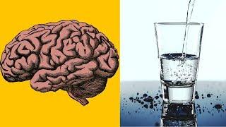 İnsan Beyni Bir Ömür 26 bin 280 Bardak Sıvı Üretir