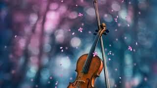 kannathil muthamittal song BGM / love romantic / whatsapp status / feel music / ringtone