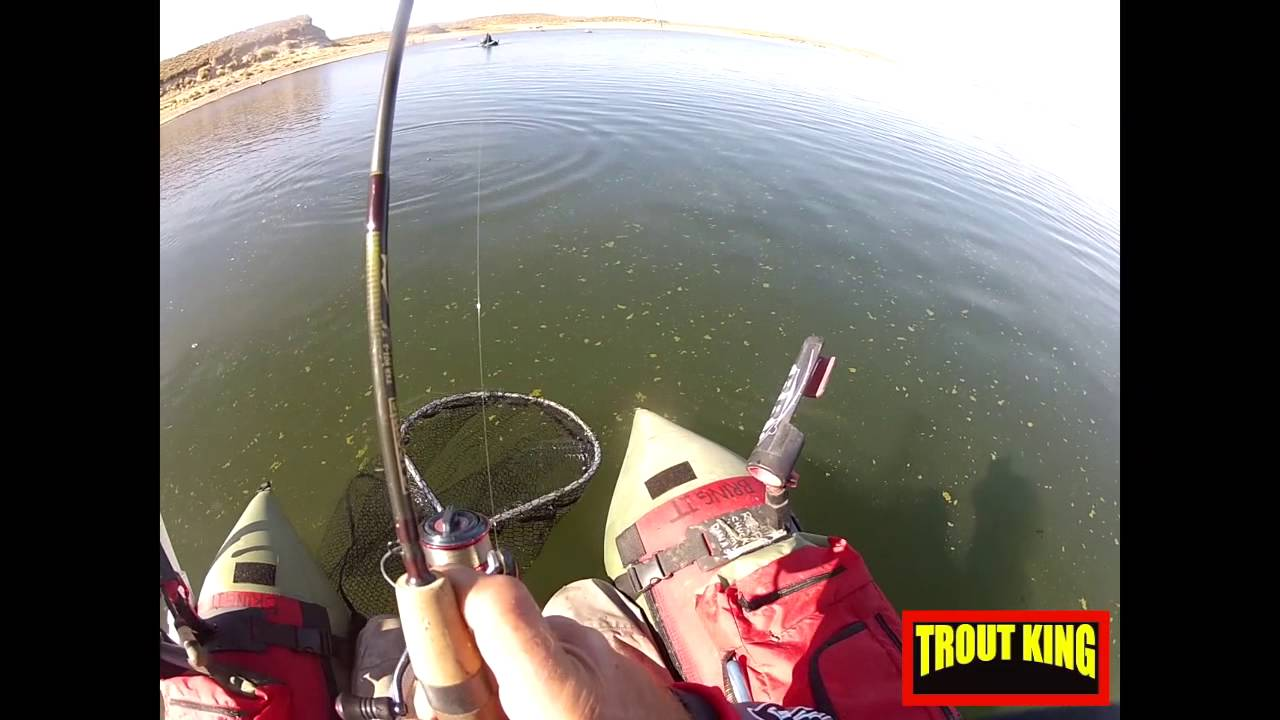 Fishing the sierras california day 1 of 3 youtube for California 1 day fishing license