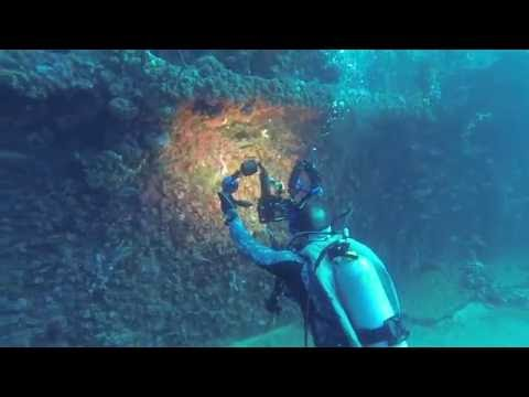 5/29/2016 - Diving the USS Duane