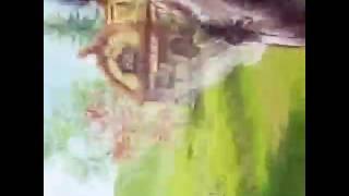Клип  к песни:Гармошка