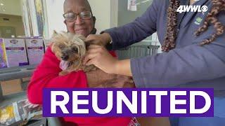 Dog reunited with elderly owner