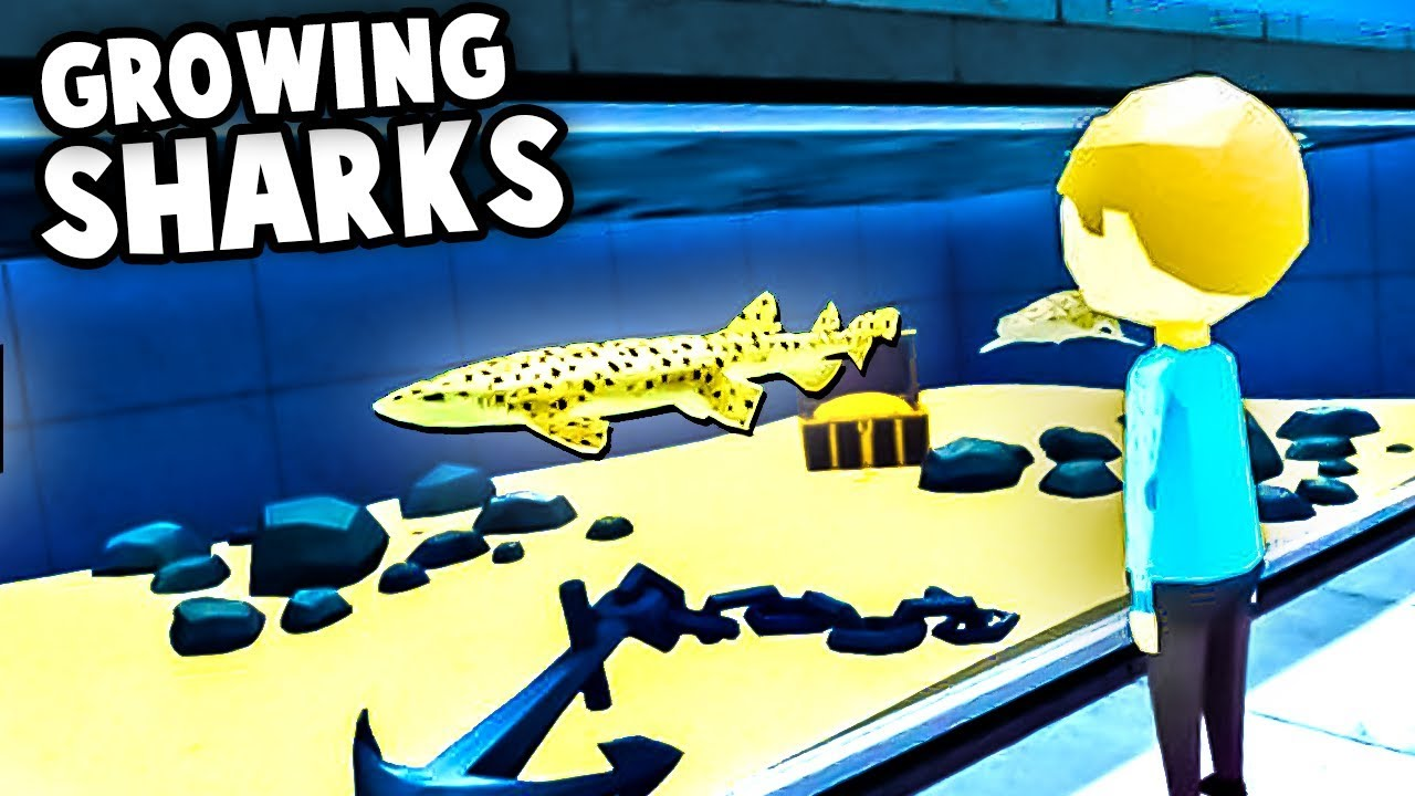 Managing Aquariums and GROWING SHARKS! (Megaquarium Gameplay)