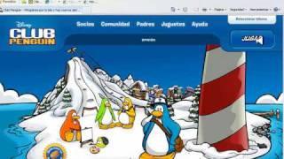 contraseña de pinguinos socios