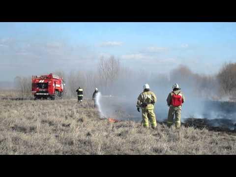 В Рязанской области начались палы сухой травы