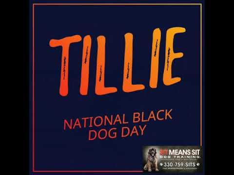national black dog day 2018