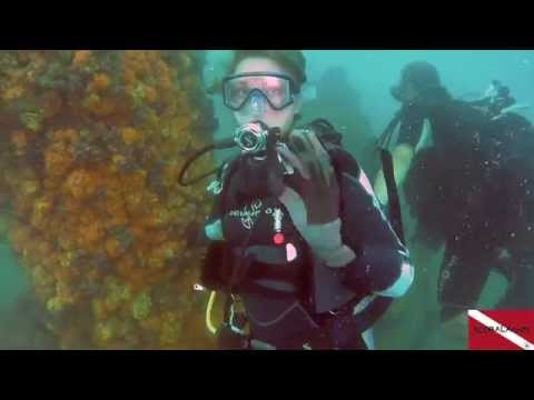 The Nigerian Diving Adventures