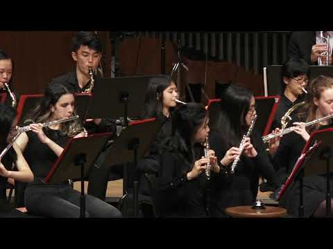 Wind and Percussion performance  Jacques Morali 【Y.M.C.A. 】