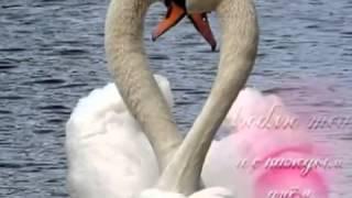 Романс для любимо