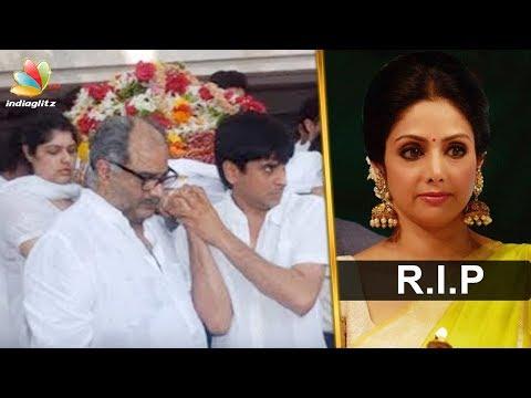 നടി ശ്രീദേവി അന്തരിച്ചു | Bollywood actor Sridevi passes away | Latest News