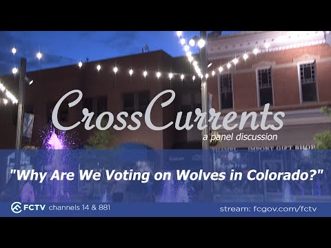 view CrossCurrents - Reintroduction of Wolves to Colorado video