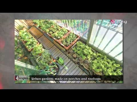 4 Angles-Korea′s Urban Farmers Dream of Sustainable Cities   지속가능한 도시를 꿈꾼다