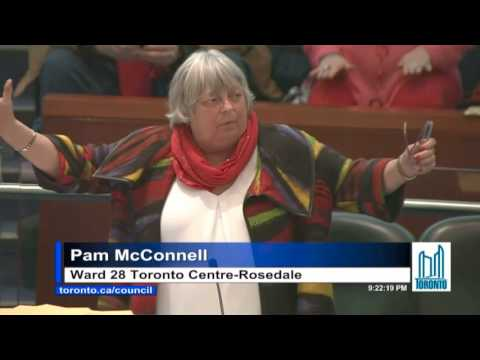 Pam McConnell advocates for shelter spaces on Feb 15th at Toronto City Council