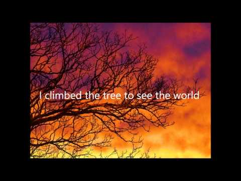 Cinematic Orchestra - To Build A Home with lyrics