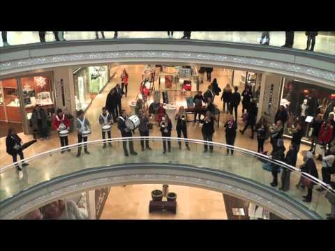 Flashmob Schlosshöfe Oldenburg 22.02.2014 Blue Lions Rastede