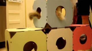 Cat Condo Design - Catty Stacks Cat House System - ねこ - ラグドール - Floppycats