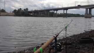 Видео о рыбалке - russian-fishing.net