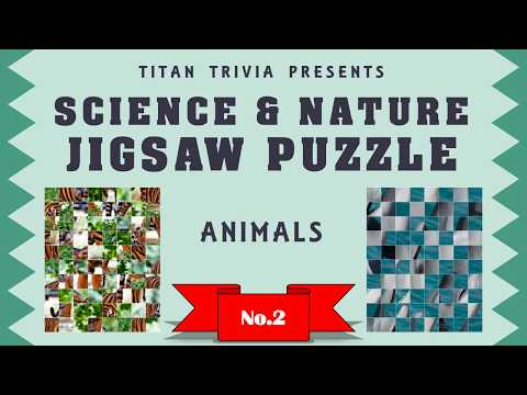animals-~-science-&-nature-jigsaw-puzzle-no.2