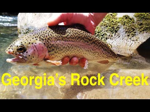 Trout Fishing Georgia's Rock Creek