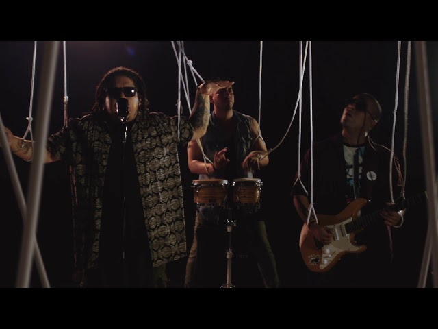 Semillas Reggae - Argucias (Official Video)