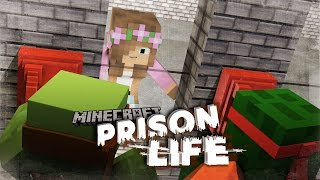Minecraft Prison Life - TINY TURTLE COMMITS MURDER?! #9