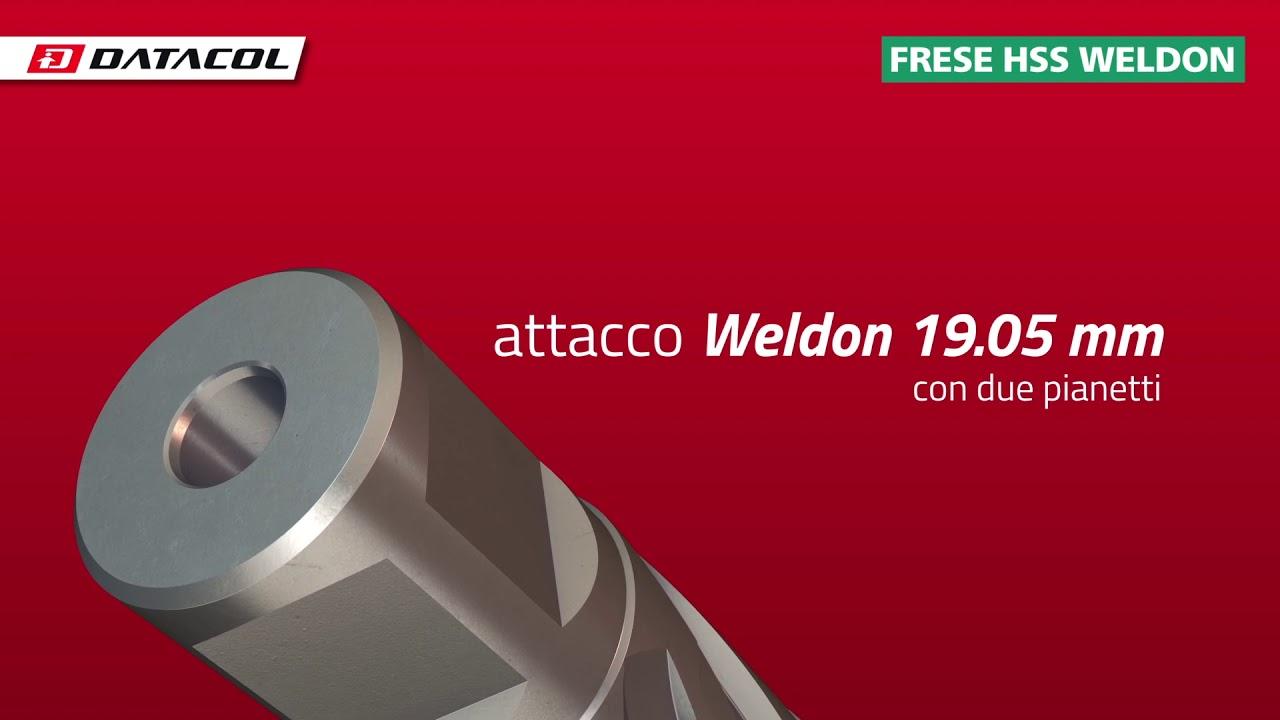 Frese HSS con attacco Weldon 19 mm per trapani a supporto magnetico h=30 mm /Ø12