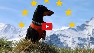 Crusoe The Dachshund Goes To Europe - 2015 Full Video