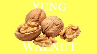 yung walnut - yuh
