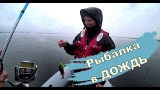 Рыбалка на джиг в дождь с главным рыбаком Деснагорска Колей