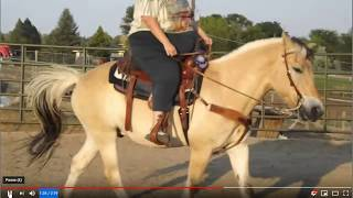 Discussing Large Horse Riders - Clues That A Horse Is Not Comfortable