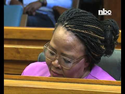 Hanse-Himarwa says Mariental CEO's testimony is false - NBC