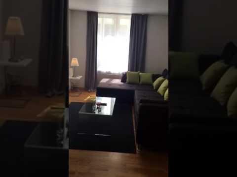 Strahinja Airbnb Apartment Zurich