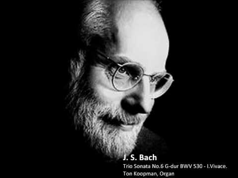 J. S. Bach - Trio Sonata No.6 In G-dur BWV 530 - I. Vivace