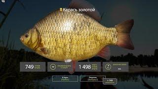 Русская Рыбалка 4 Озере Комариное Точка для ловли Троф Карася
