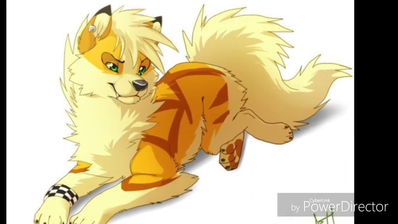 Wich Anime Orange Wolf Wwwtopsimagescom