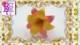 Как сделать цветок Лилия из бумаги. Оригами. How to make a Lily flower of paper. Origami.(В этом видео я покажу как легко сделать своими руками очень красивый цветок - Лилию из бумаги. Это поделка..., 2016-04-30T08:00:00.000Z)